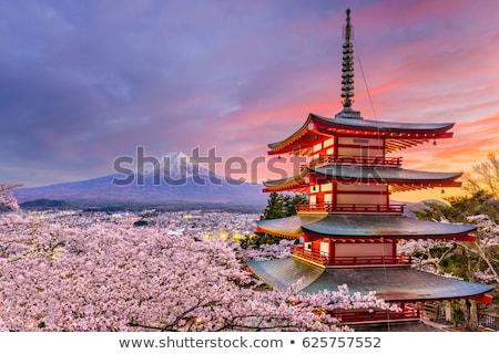 Górskich fuji Japonia jezioro niebo krajobraz Zdjęcia stock © vichie81