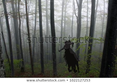 beautiful amazon archer stock photo © nejron