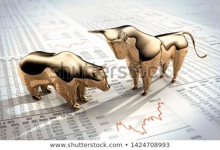 stock market bull and bear stock photo © lightsource