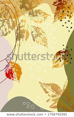 Modern leaflet template with pattern in warm color tones Stock photo © liliwhite