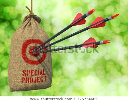 Сток-фото: Special Project - Arrows Hit In Target