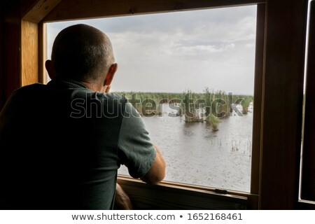 Bird watching hut Stock photo © ivonnewierink