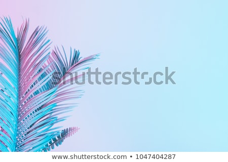 Pastel abstrato colorido linhas azul arco-íris Foto stock © kimmit