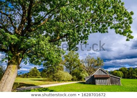 Edad cabaña tradicional rumano soleado Foto stock © photosebia