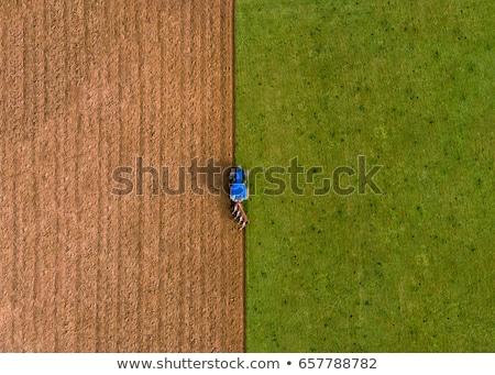 azul · trator · campo · primavera · balde - foto stock © Agatalina