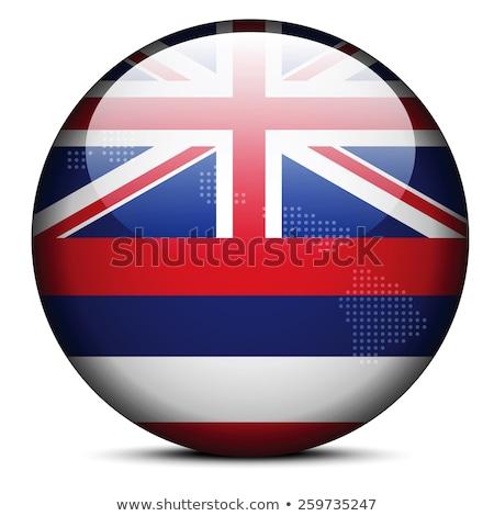 Stok fotoğraf: Harita · nokta · model · bayrak · düğme · ABD