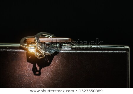 suitcase from pinned open handcuffs stock photo © ozaiachin