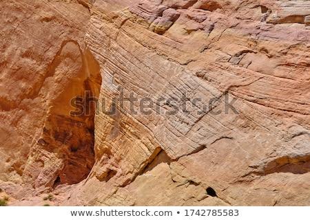Kumtaşı yüz soyutlama duvarlar kanyon ABD Stok fotoğraf © pedrosala