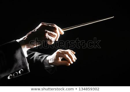 Orquestra masculino mãos música Foto stock © AndreyPopov