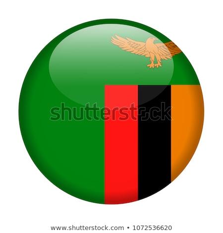 zászló · ikon · Zambia · izolált · fehér · térkép - stock fotó © mikhailmishchenko