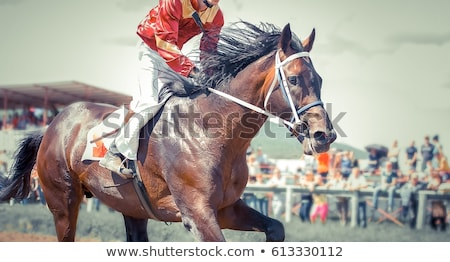 derby stock photo © netkov1