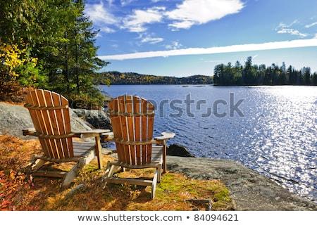 Park Ontario tó vadon ősz ősz Stock fotó © pictureguy