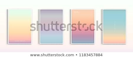 Zdjęcia stock: Wektora · zamazany · morza · wygaśnięcia · pomarańczowy · kolorowy