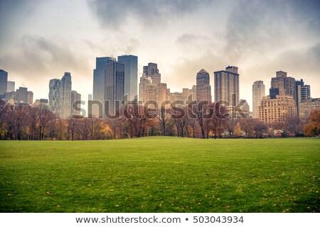 bulutlu · gün · sonbahar · Central · Park · yan · güney - stok fotoğraf © rmbarricarte