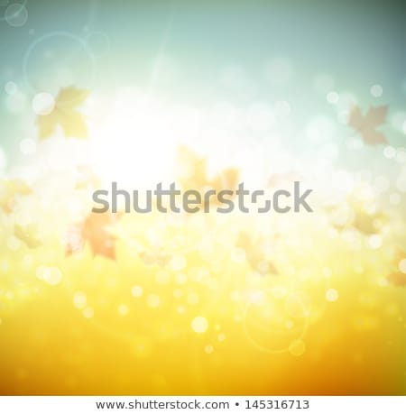 hermosa · otono · sol · eps · 10 · vector - foto stock © beholdereye