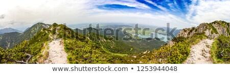 panoramic view to Eschenlohe Stock photo © magann