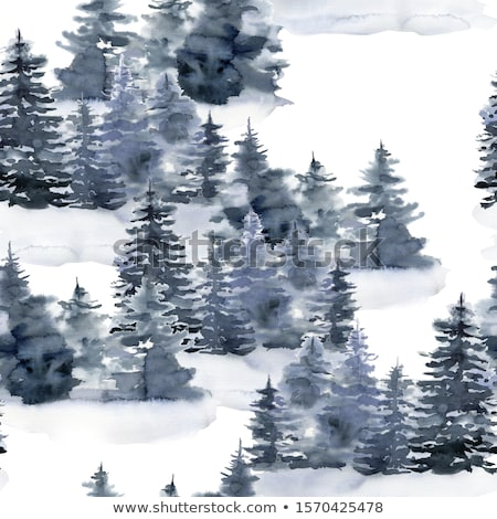 Winter in the spruce forest Stock photo © Kotenko
