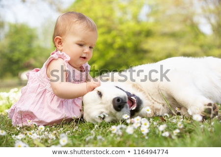 Baby girl and pet dog Stock photo © bluering
