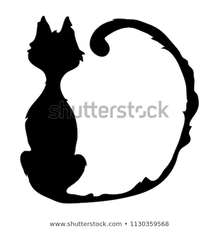 Witch legs and black cat for Halloween Stock photo © adrenalina