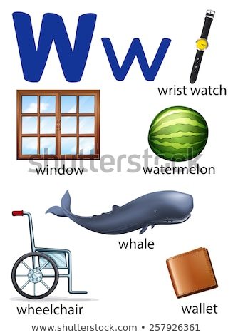 Flashcard letter W is for wallet Stock photo © bluering