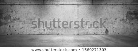 Viharvert beton fal öreg külső homlokzat Stock fotó © stevanovicigor