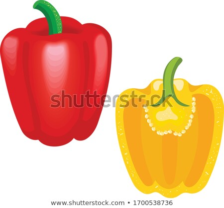 realistic illustration of a yellow pepper stock photo © cidepix