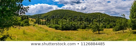 緑 · 山 · カバー · 森林 · 青空 · パノラマ - ストックフォト © andreonegin