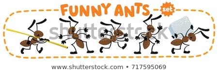 Mieren insecten zomer natuur icon Stockfoto © Olena