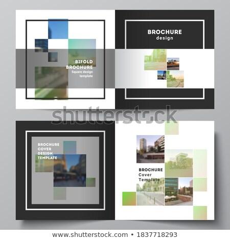 modern · üzlet · szórólap · brosúra · sablon · terv - stock fotó © sarts