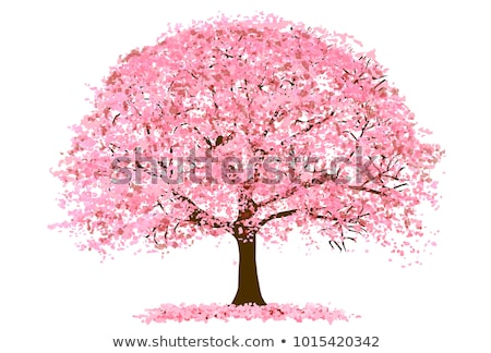 icon of a blossoming tree stock photo © olena