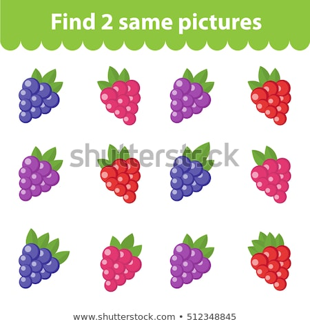 find 2 similar fruits Stock photo © Olena