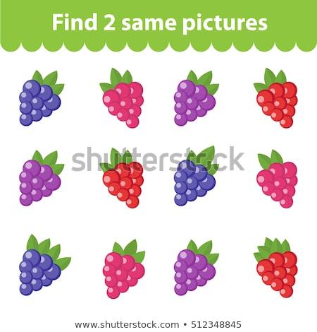 Vinden soortgelijk vruchten spel kinderen taak Stockfoto © Olena