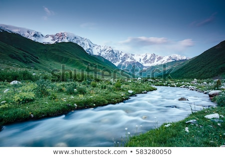 Rapid river at the foot of the glacier Shkhara. Location Svaneti Stock photo © Leonidtit