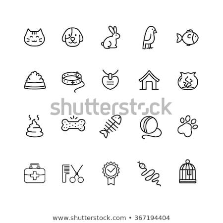 ícone amizade doméstico forma gato Foto stock © Olena