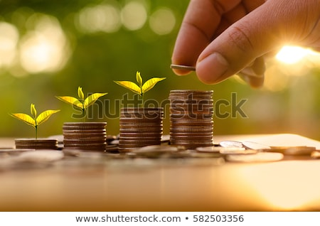 Small Investor Financial Concept Stock photo © Lightsource