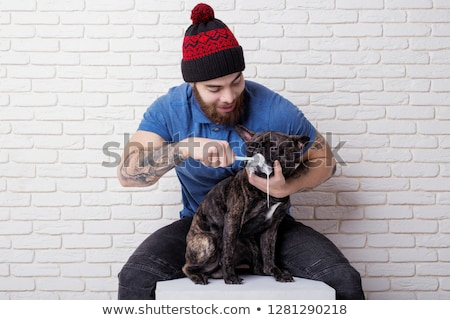 French bulldog dog in the hands of a veterinarian Stock photo © OleksandrO