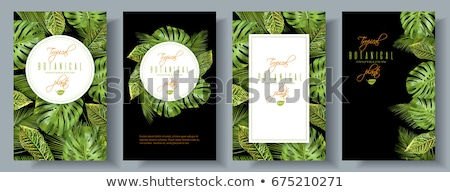 vertical banners of green leaves Stock photo © SArts