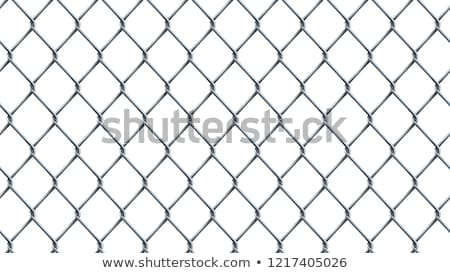 Chain link fence pattern. Realistic geometric texture Stock photo © pakete