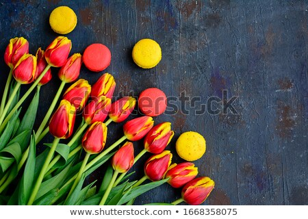 floral frame and dessert macaroons on a blue wooden background stock photo © kotenko