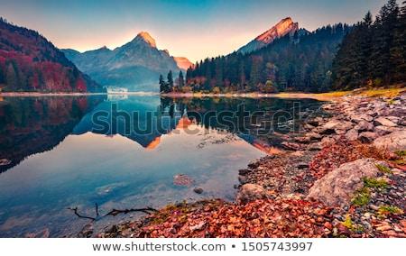 ciudad · paisaje · aislado · blanco · hermosa · aire · libre - foto stock © bluering