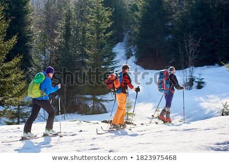 Neve árvore homem inverno caminhada Foto stock © IS2