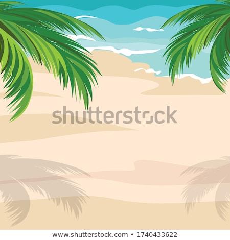 Plaża piaszczysta egipcjanin hotel dzień drzewo chmury Zdjęcia stock © Givaga