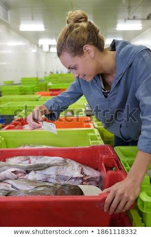 Ouvrier d'usine protection manteau alimentaire homme clé Photo stock © toyotoyo