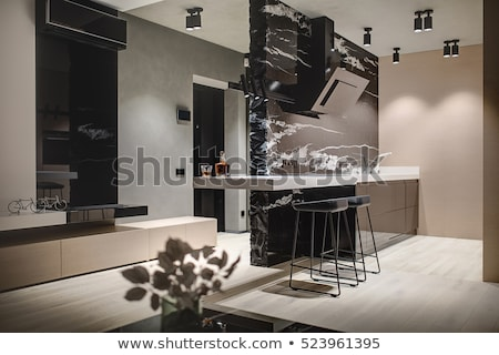 кухне современный стиль белый свет раковина темно Сток-фото © bezikus