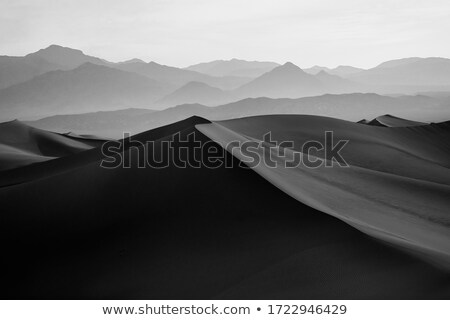 Beautiful sand dune landscape Stock photo © bluering
