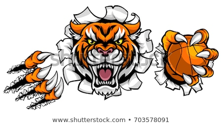 tiger holding basketball ball mascot stock photo © krisdog