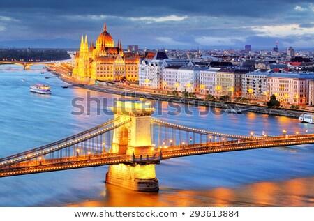 Parlement boot meeuwen donau rivier Boedapest Stockfoto © Givaga