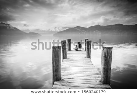 Lake Lucerne bench and waterfront view Stock photo © xbrchx