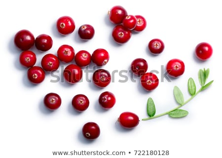 cranberries with leaves top view paths stock photo © maxsol7