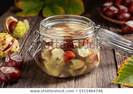 preparation of homemade tincture from fresh horse chestnuts stock photo © madeleine_steinbach